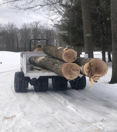 Bucks-Run-Winter-Tree-Removal